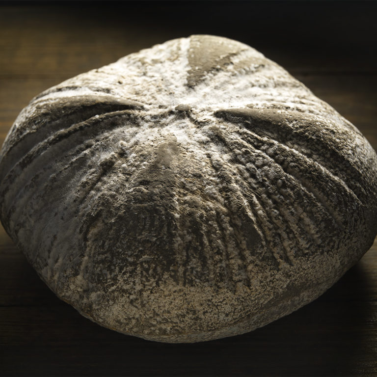 queso-aragon-fuera