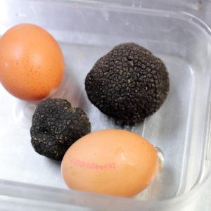 Huevos trufados con Tuber melanosporum de Aragón
